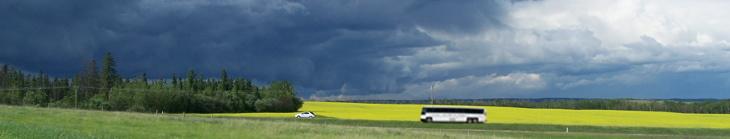 NE-summer storm